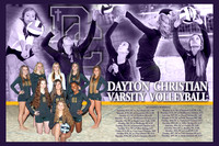 2014-2015 DCHS Volleyball